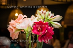Tesselhuus-Benefiet_Zaterdag-03-02-2018-0100